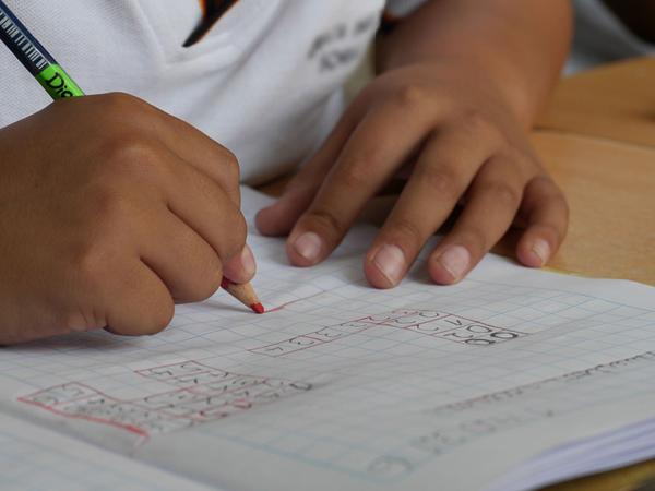 Soutien scolaire payé par le CESU