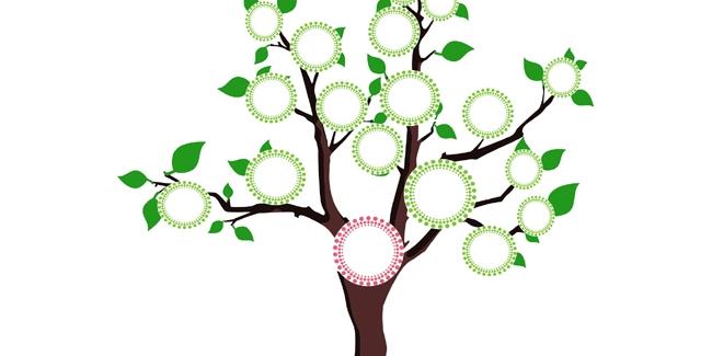 Comment cr er un arbre g n alogique par quoi commencer for Quoi creer comme entreprise