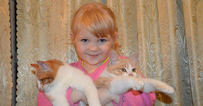 adopter un chat pour les enfants