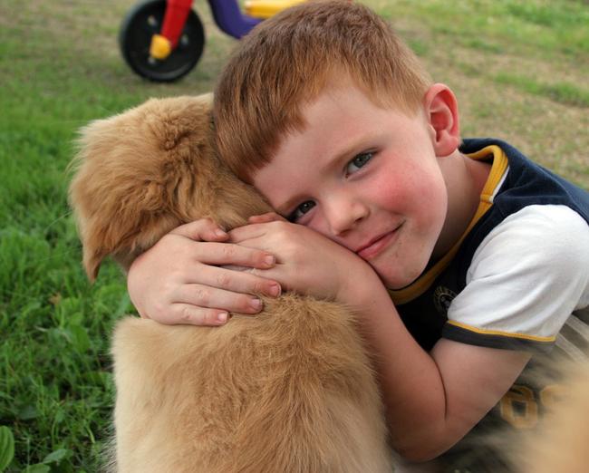 votre enfant veut un chien