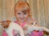 5 bonnes raisons d'adopter un chat pour les enfants