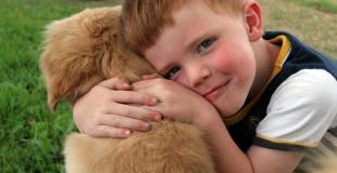 Comment réagir si votre enfant veut un chien ?
