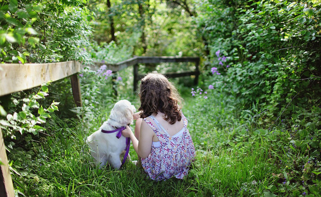 Quelle race de chien choisir quand on habite en ville avec des enfants ?