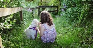 Comment choisir un animal de compagnie pour son enfant ?