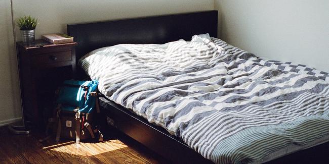 Invasion de punaises de lit dans la maison : comment régler le problème ?